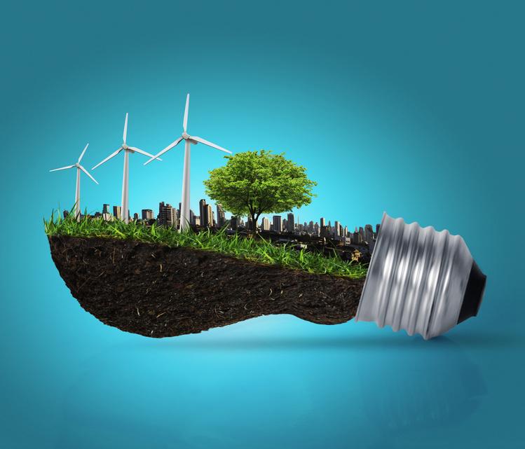 Fotolia_36621091_S_eerr II Foro de Inversión Verde: impulsar la creación de negocios sostenibles