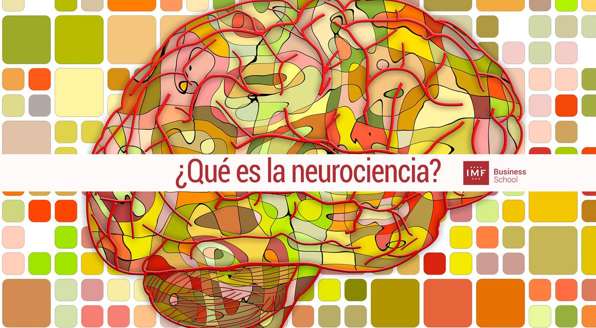neurociencia ¿Qué es la neurociencia? El cerebro, nuestro aliado misterioso