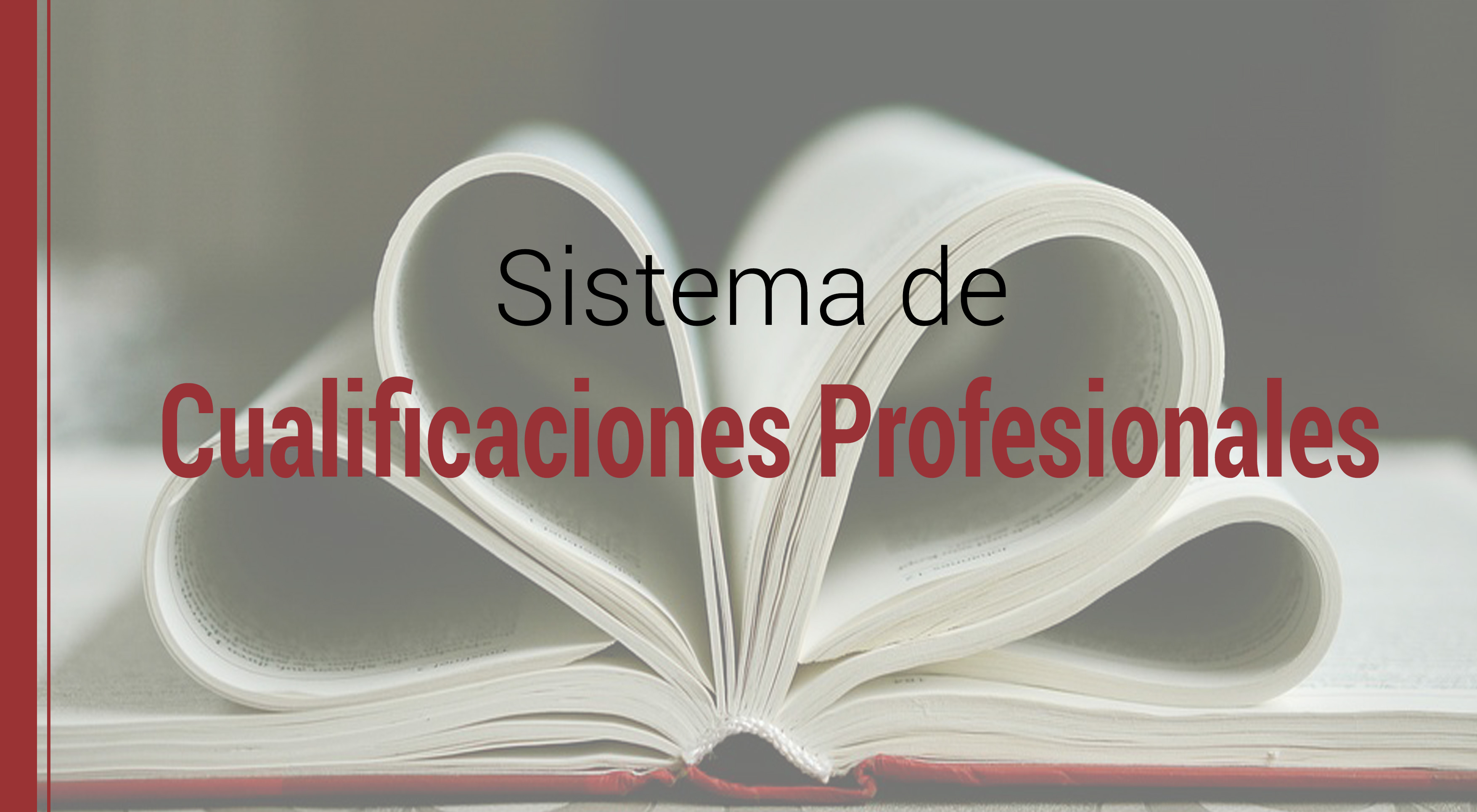 sistema-cualificaciones-profesionales-retos Sistema de cualificaciones profesionales: Los retos del aprendizaje a lo largo de la vida