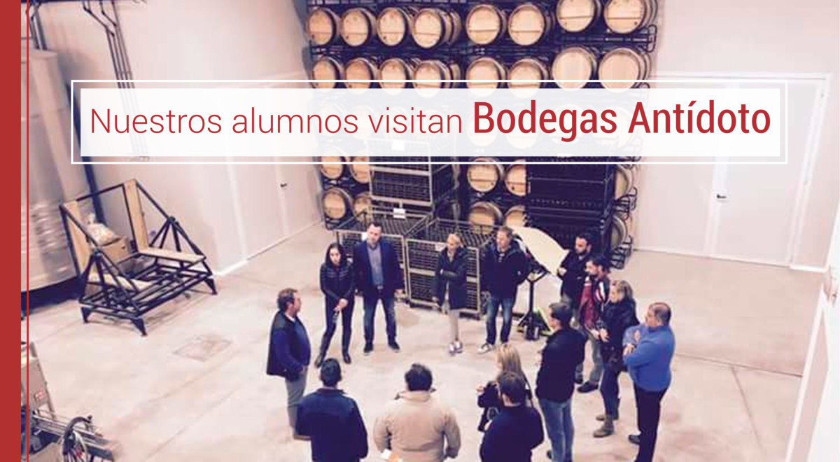 alumnos-visitan-bodegas-antidoto-enologia Alumnos del MBA Enología de IMF visitan Bodegas Antídoto