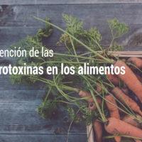 seguridad-alimentaria-prevenir-microtoxinas-alimentos-200x200 AECOSAN y la prevención de las microtoxinas en los alimentos