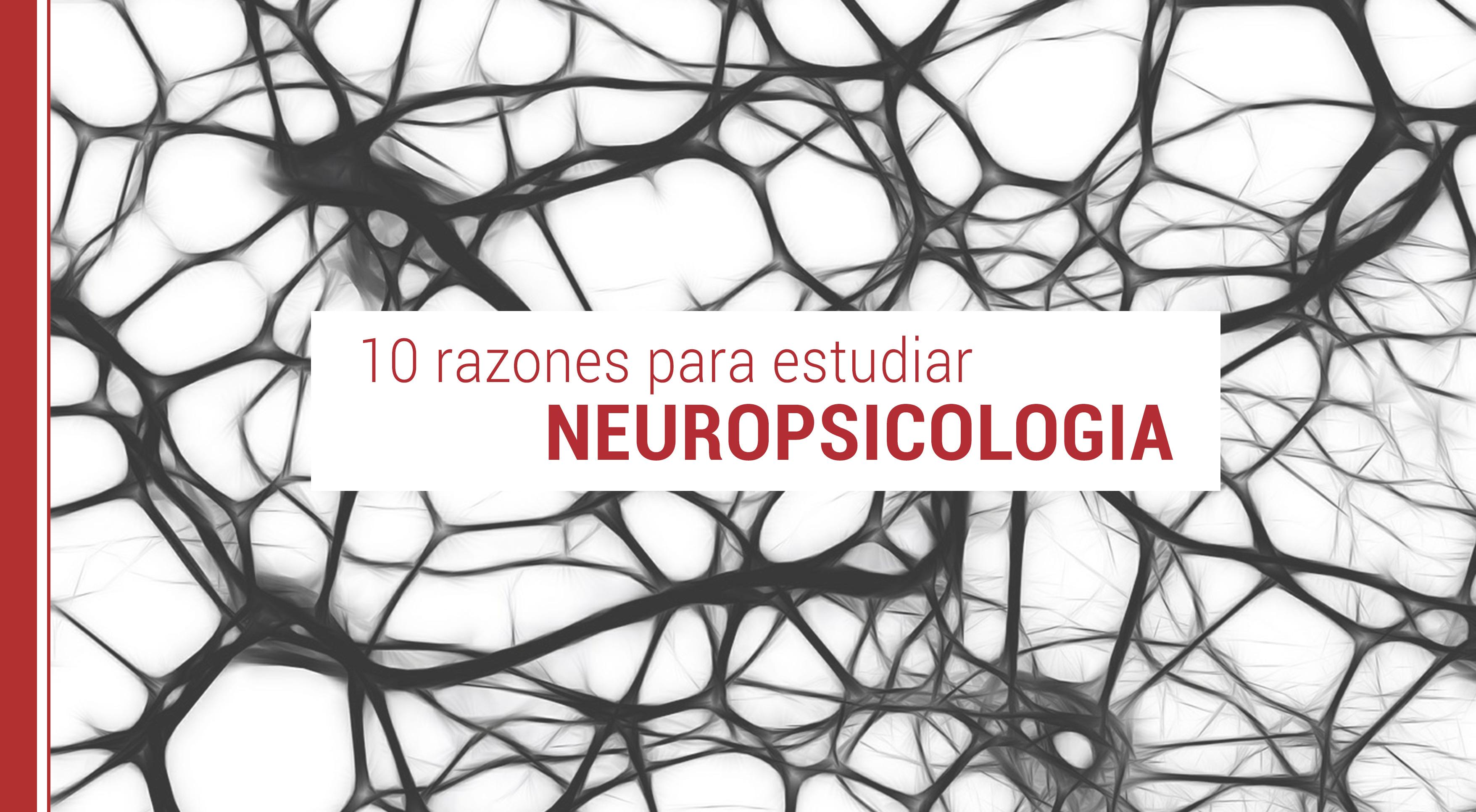 10-razones-estudiar-neuropsicologia 10 razones para estudiar neuropsicología