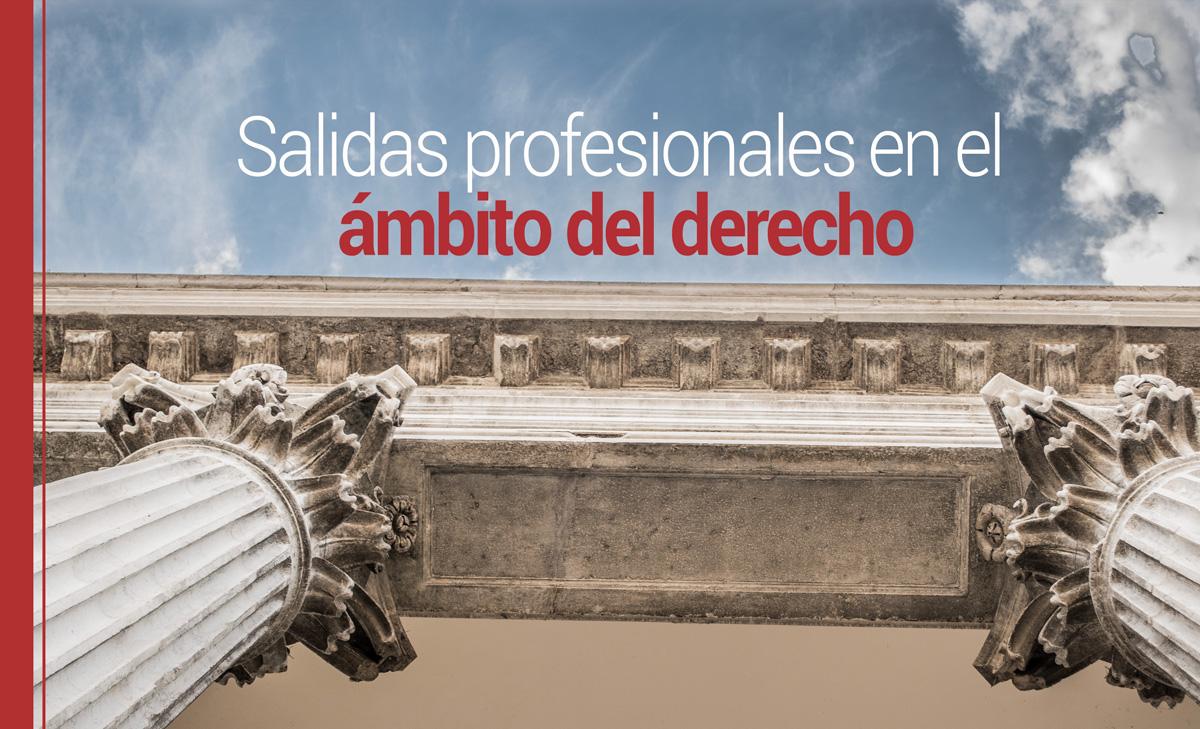 Cilios Antídoto carril  ▷ Salidas profesionales tras la carrera de derecho
