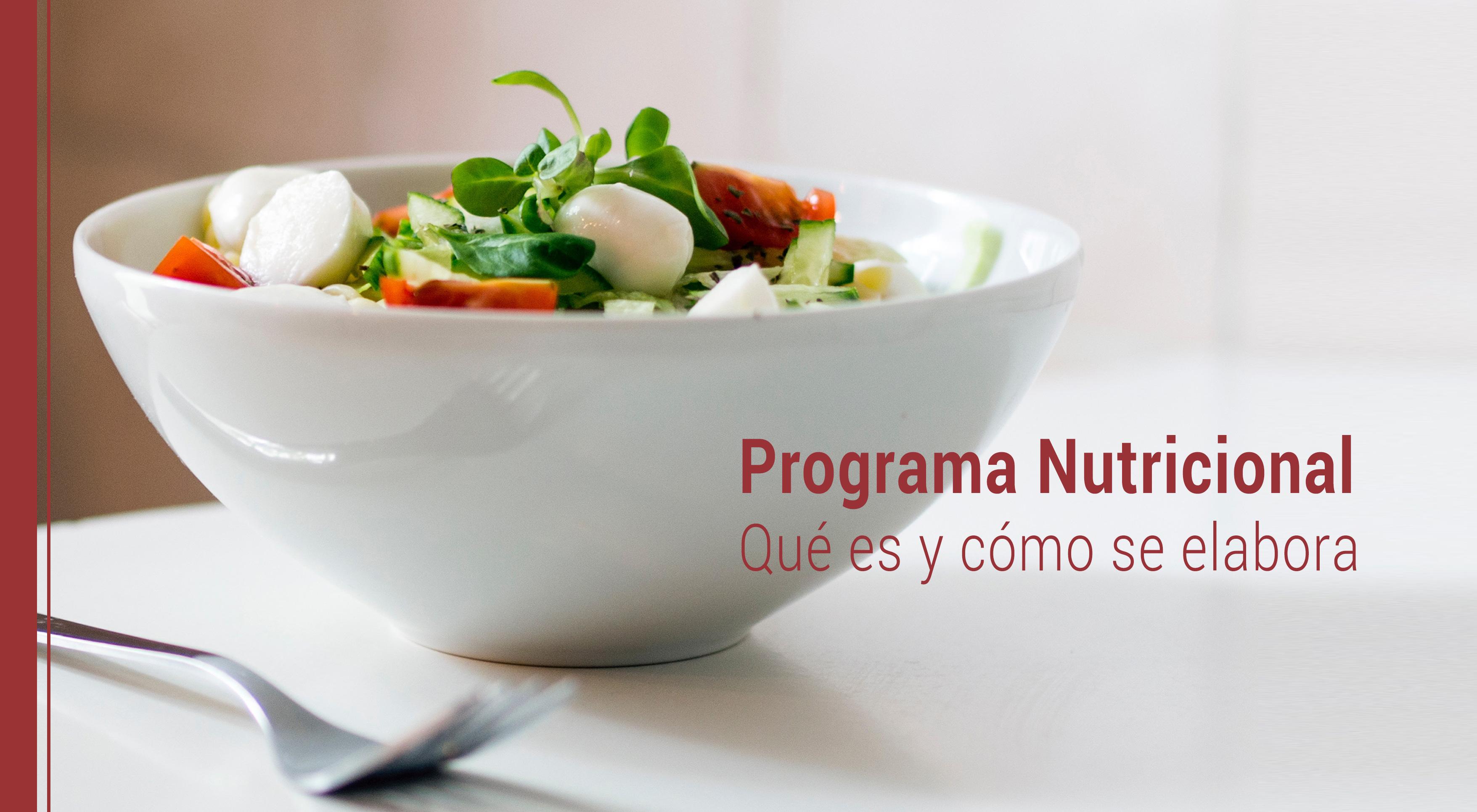programa-nutricional-que-es-como-se-elabora Qué es un Programa Nutricional y cómo se elabora