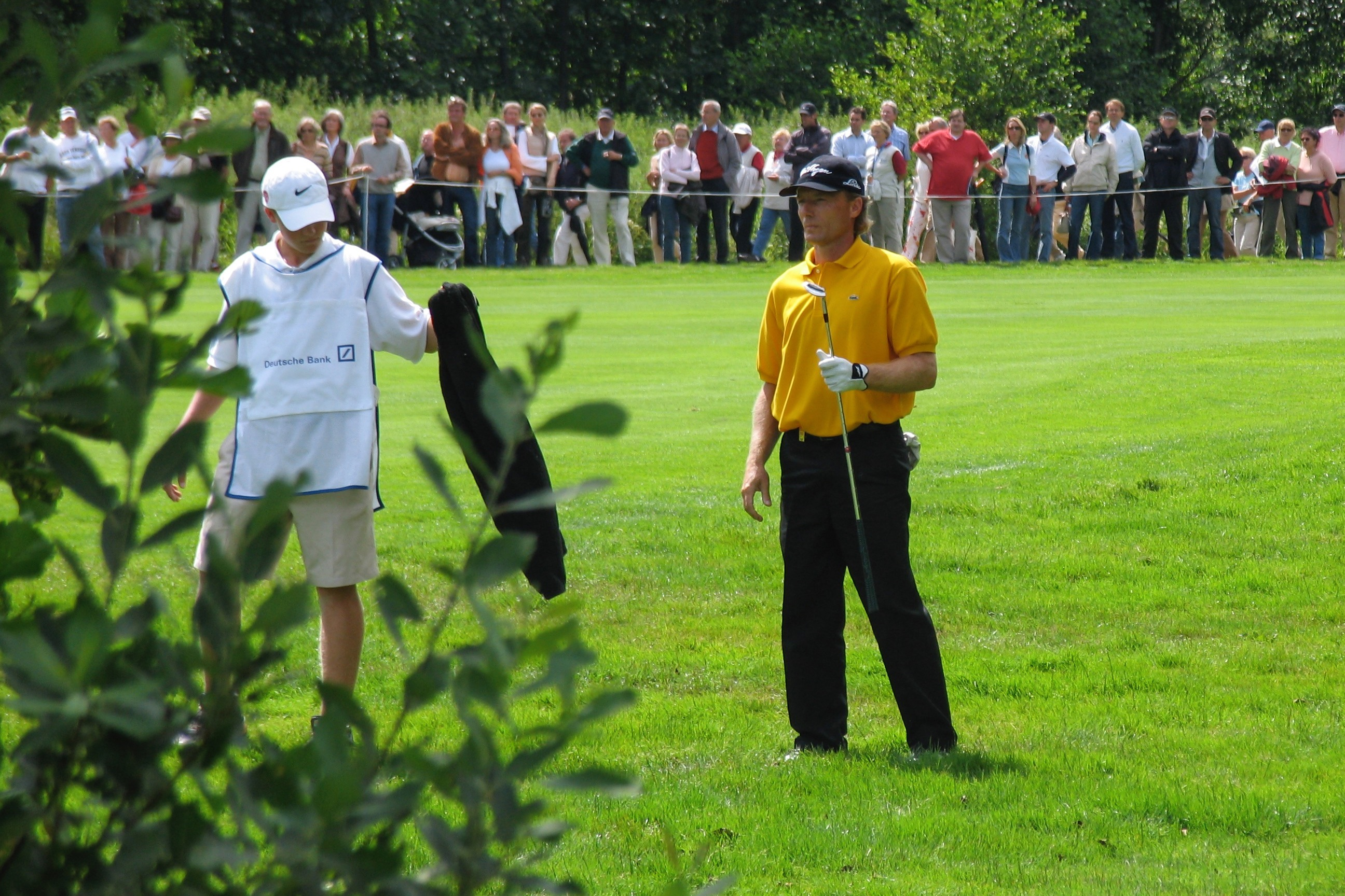 mba gestion campos de golf