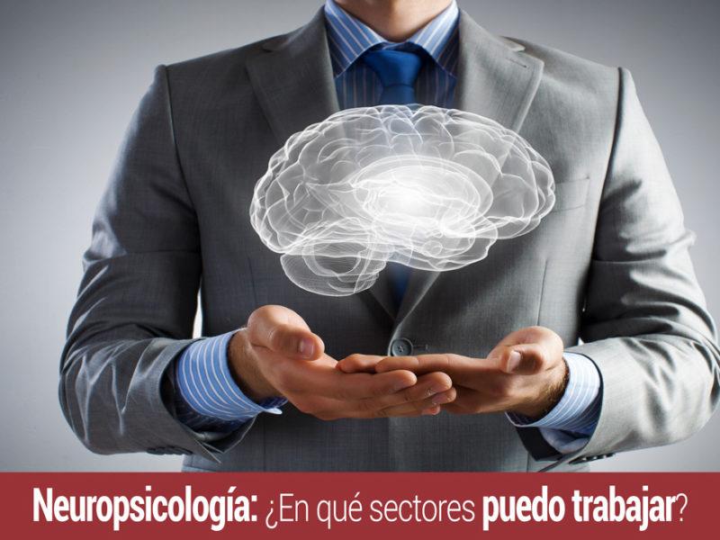 neuropsicologia-en-que-sectores-trabajar-800x600 Neuropsicología: ¿En qué sectores puedo trabajar?