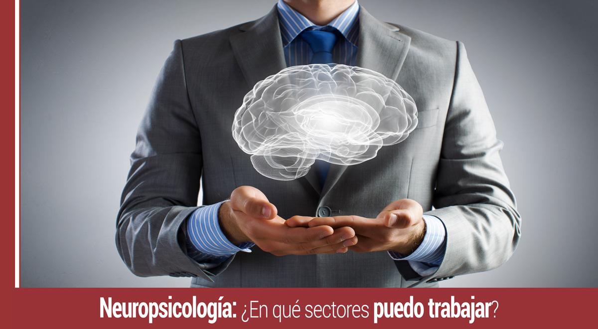 neuropsicologia-en-que-sectores-trabajar Neuropsicología: ¿En qué sectores puedo trabajar?