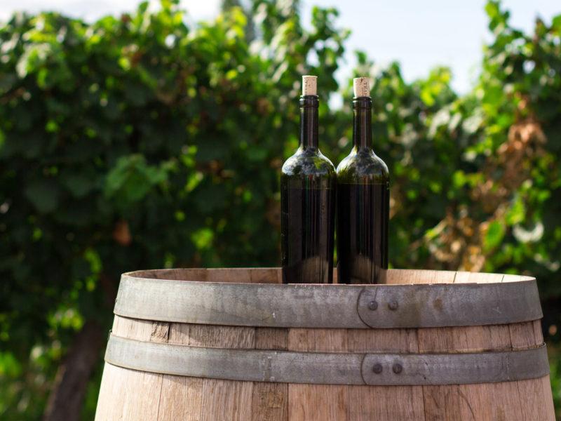 principales-zonas-vinicolas-españa-800x600 Principales zonas vinícolas de España que debes conocer