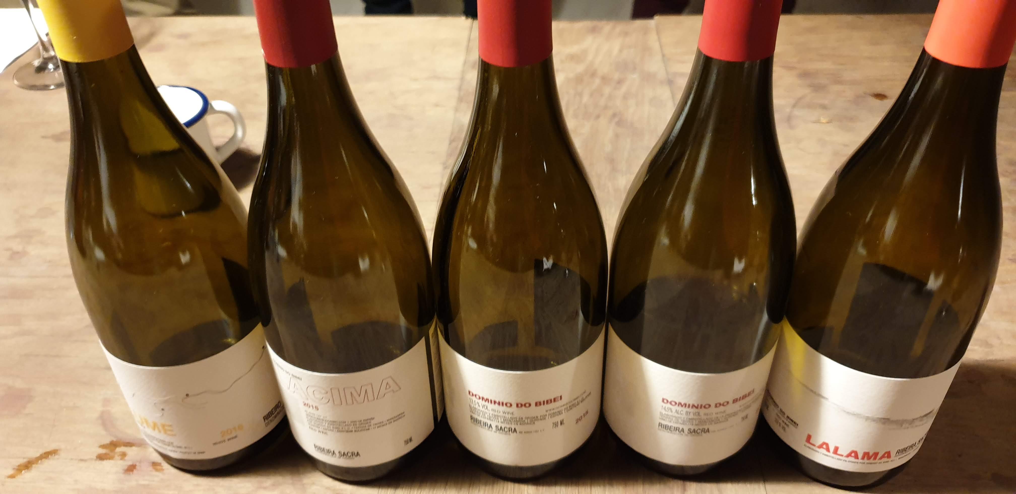 ruta IMF descubre la calidad y singularidad en los vinos de Dominio do Bibei