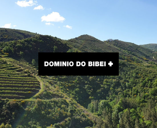 dominio-do-bibei-550x448 Inicio