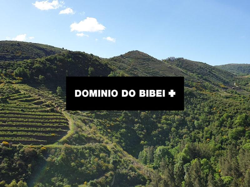 dominio-do-bibei-800x600 IMF descubre la calidad y singularidad en los vinos de Dominio do Bibei