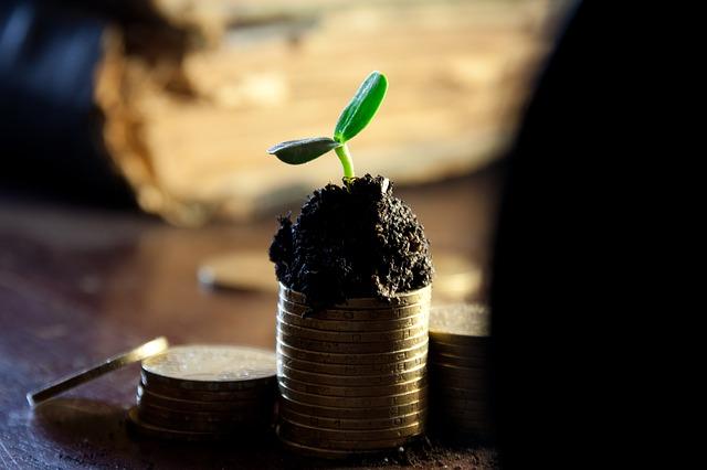 money-549161_640 Máster Energías Renovables: una apuesta a futuro
