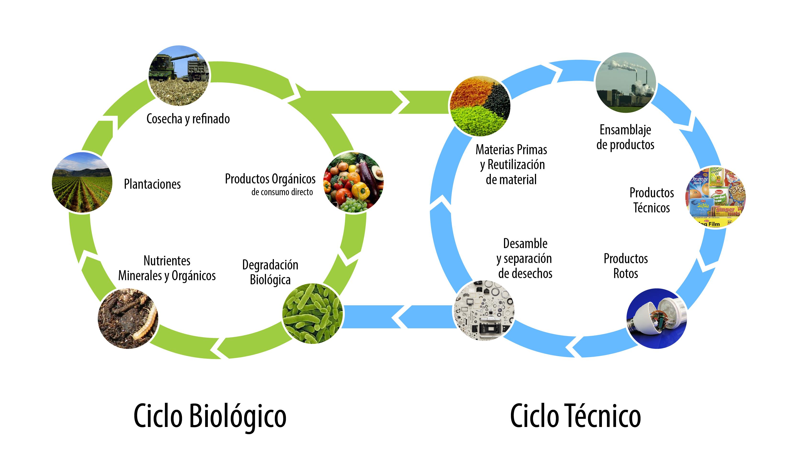 Ciclo_de_vida_C2C