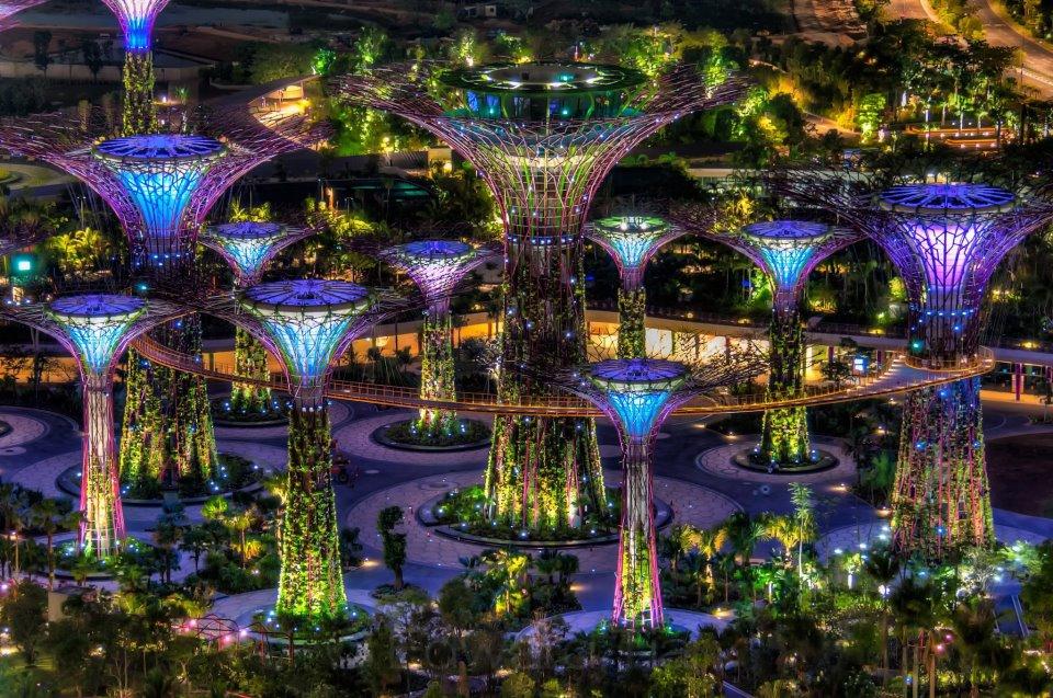 Árboles en el Jardín de Singapur