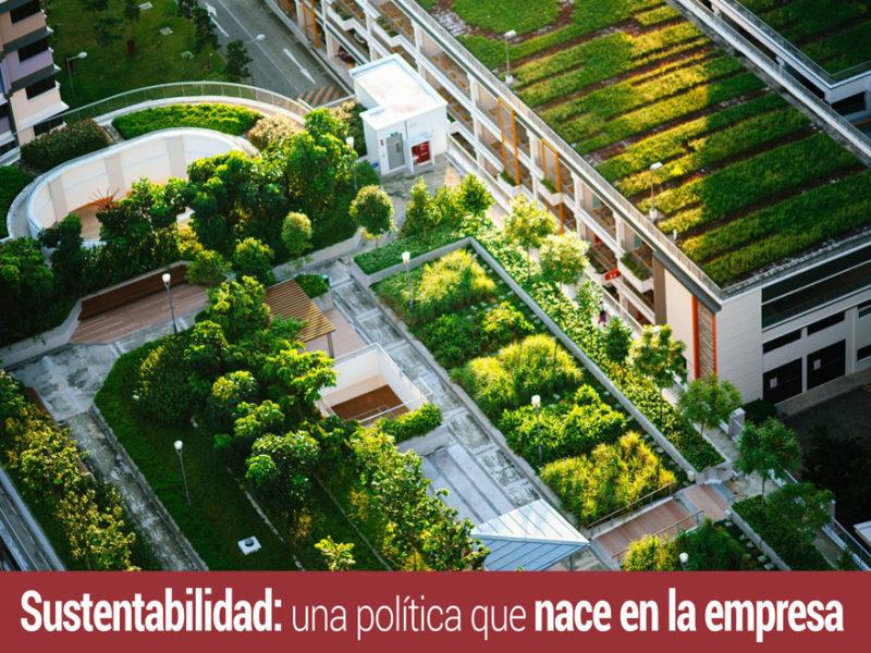 la sustentabilidad en la empresa