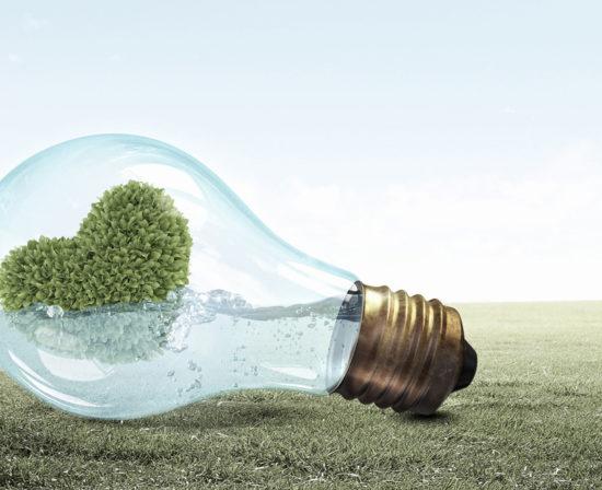 14 de febrero dia mundial de la energia