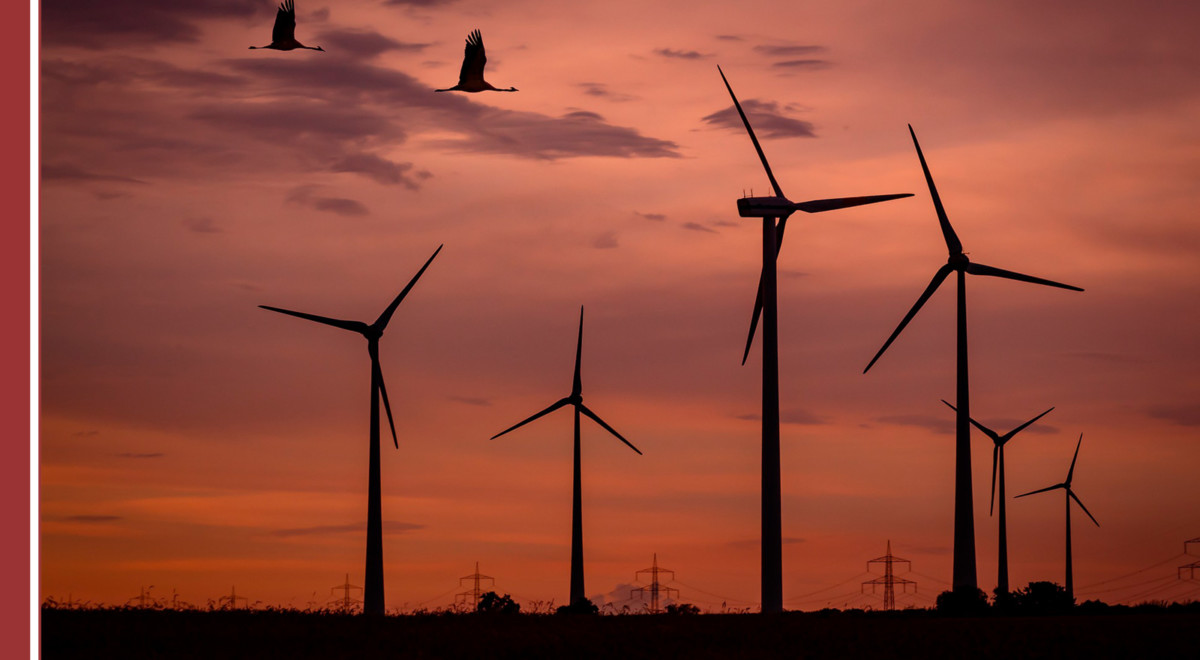 Empresas españolas en el sector energetico