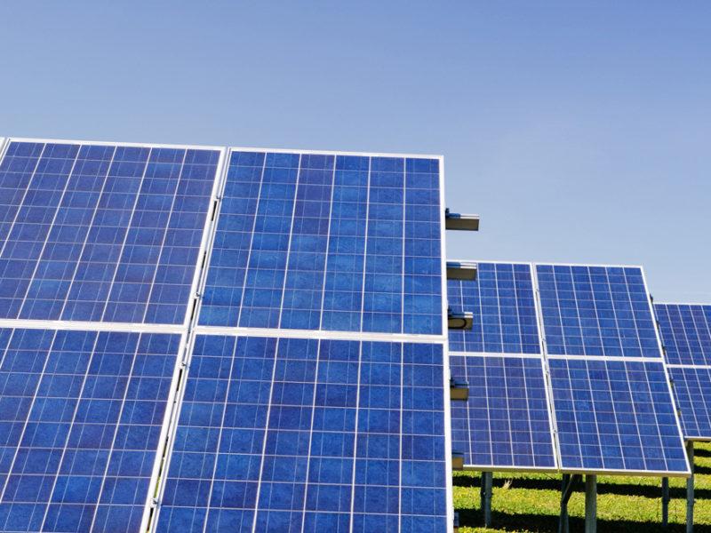 Eenergias renovables empleo futuro