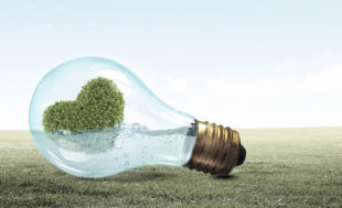 energías-renovables-inversion-verde-que-prefieren-los-españoles