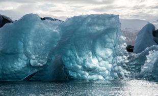 dia mundia contra el cambio climatico