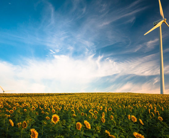 crecimiento-energias-renovables-latam