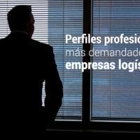perfiles profesionales en logistica