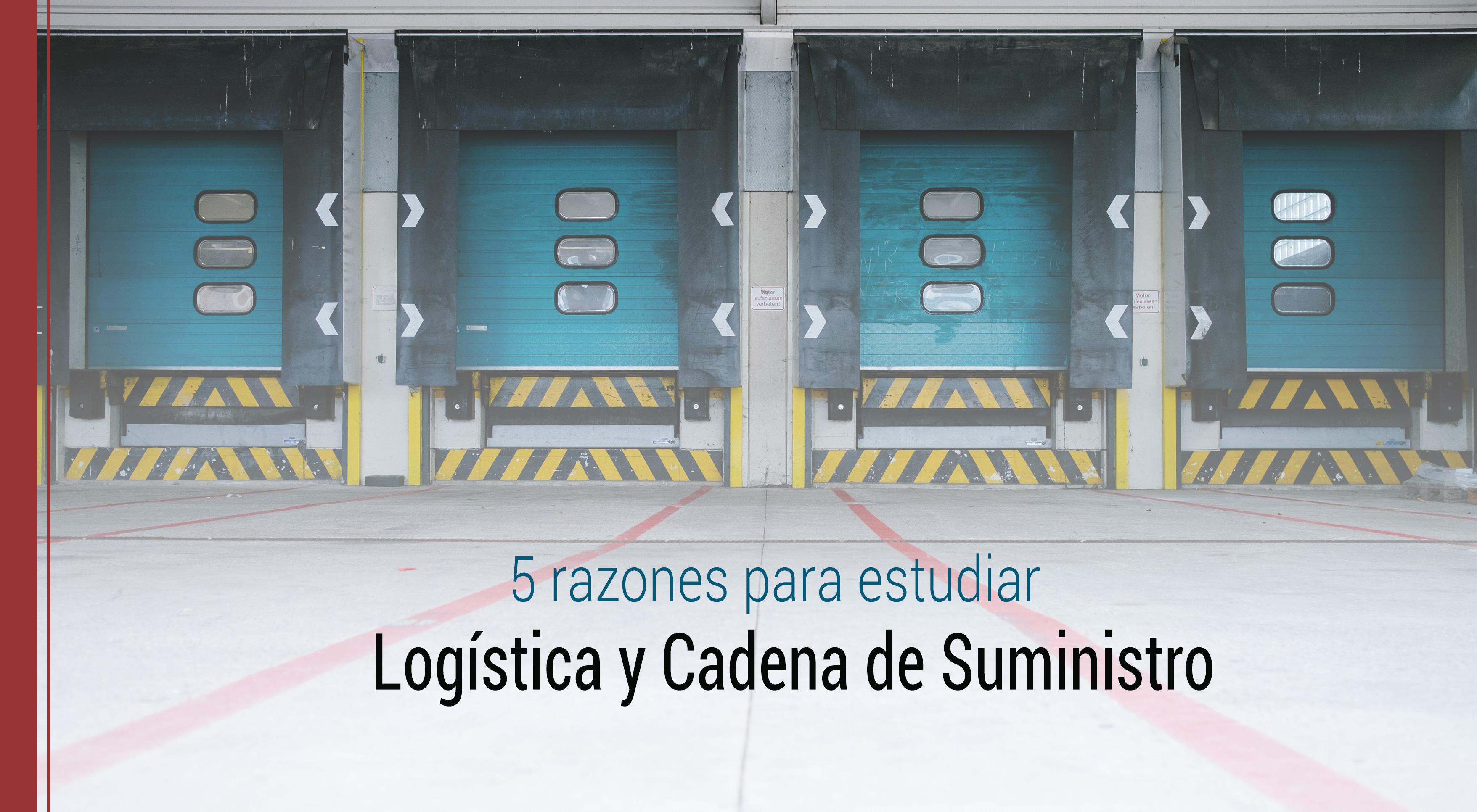 por que estudiar logistica y cadena de suministro