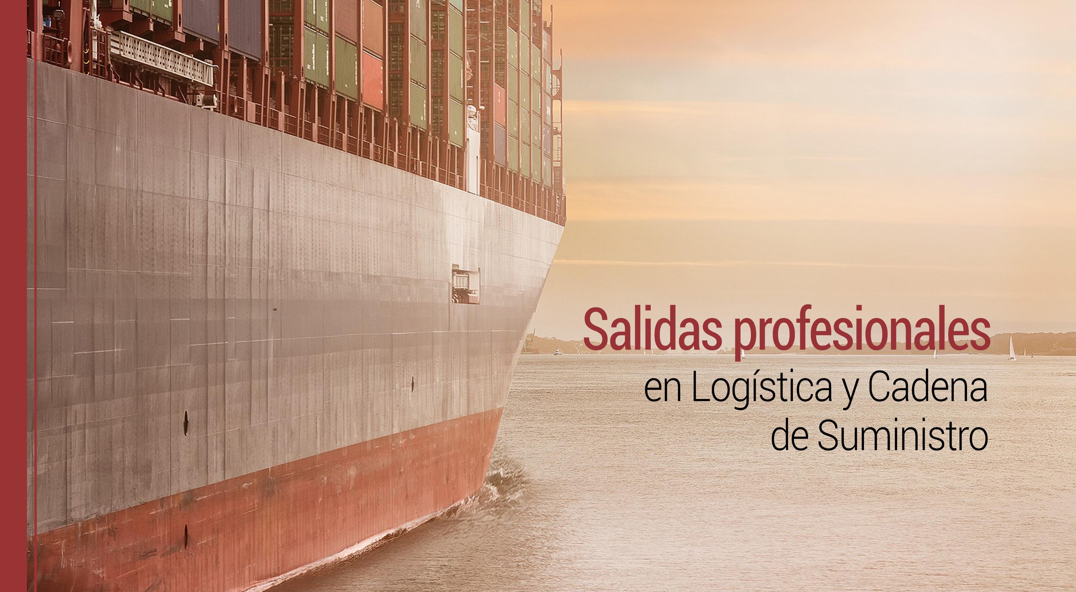 salidas profesionales en logistica y cadena de suministro