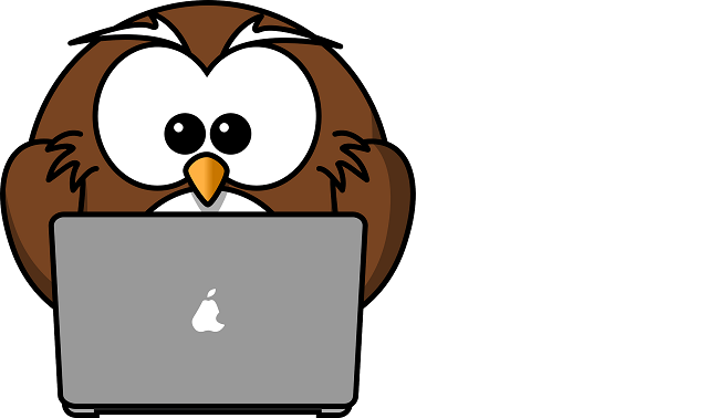 Ventajas de organizar un webinar?