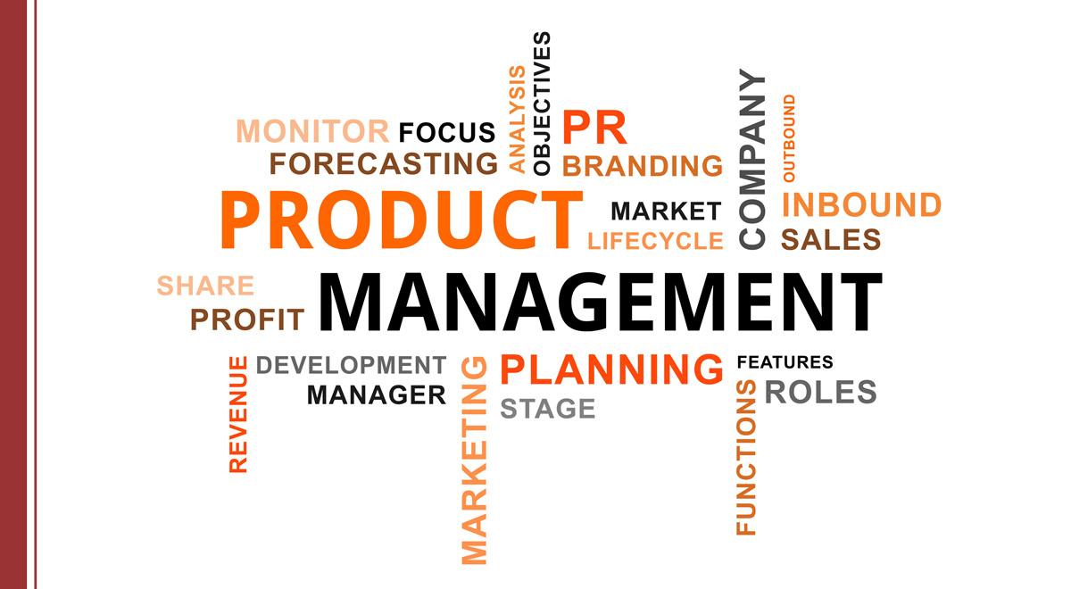 product management y ciclo de vida del producto