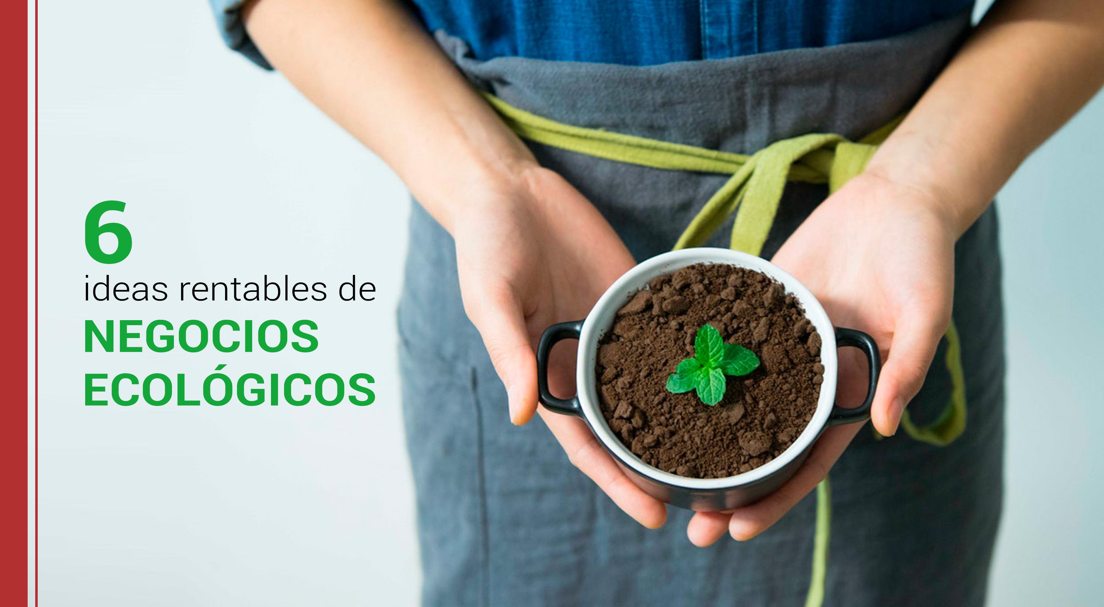 6-ideas-rentables-negocios-ecologicos 6 ideas rentables de negocios ecológicos