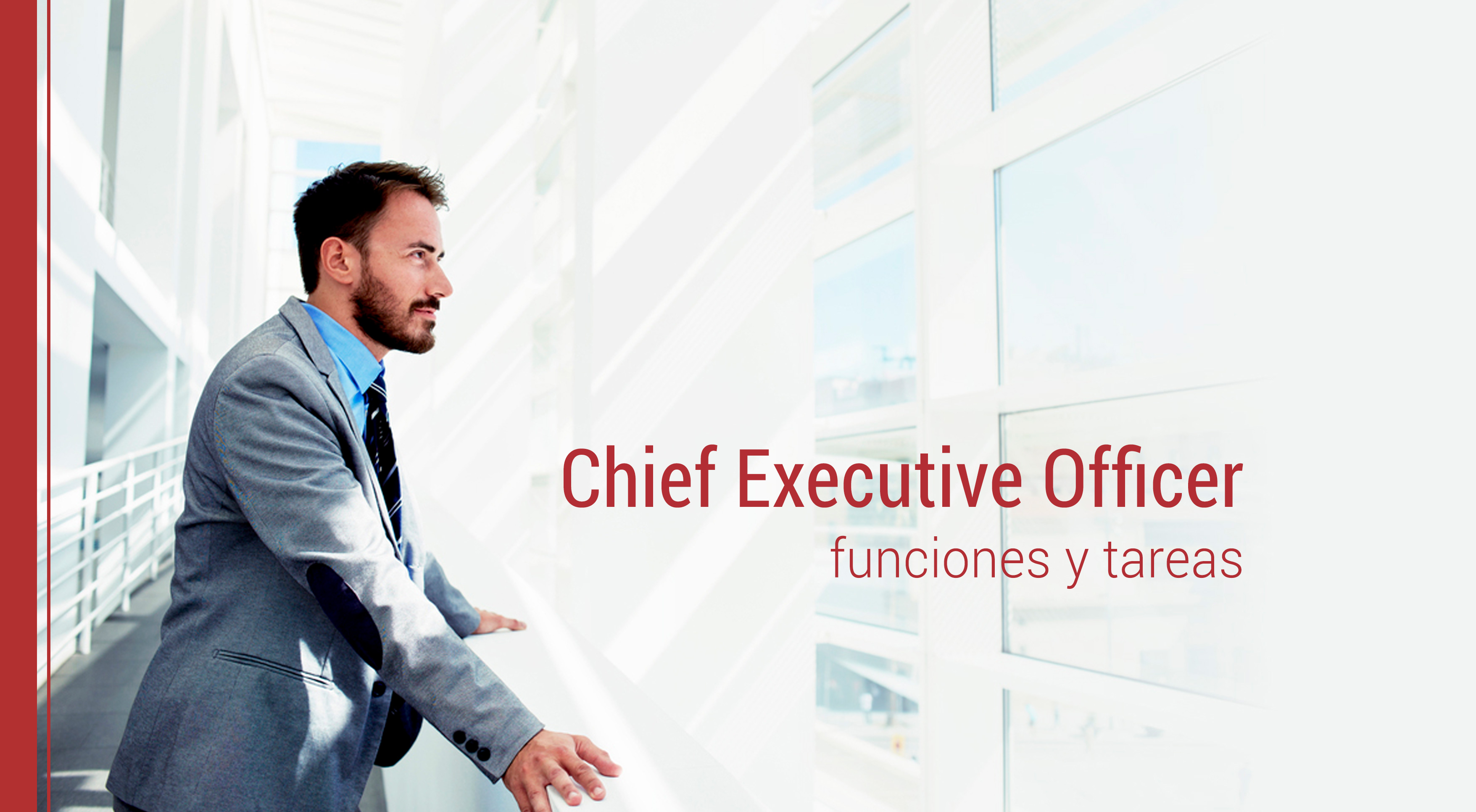 funciones-tareas-del-ceo Funciones y tareas del CEO
