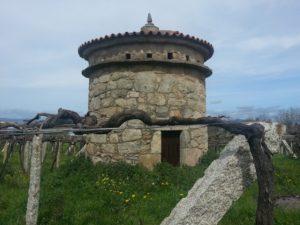 Palomar-de-Bodegas-Zarate-300x225 Enólogo: qué es y qué hace este profesional del vino