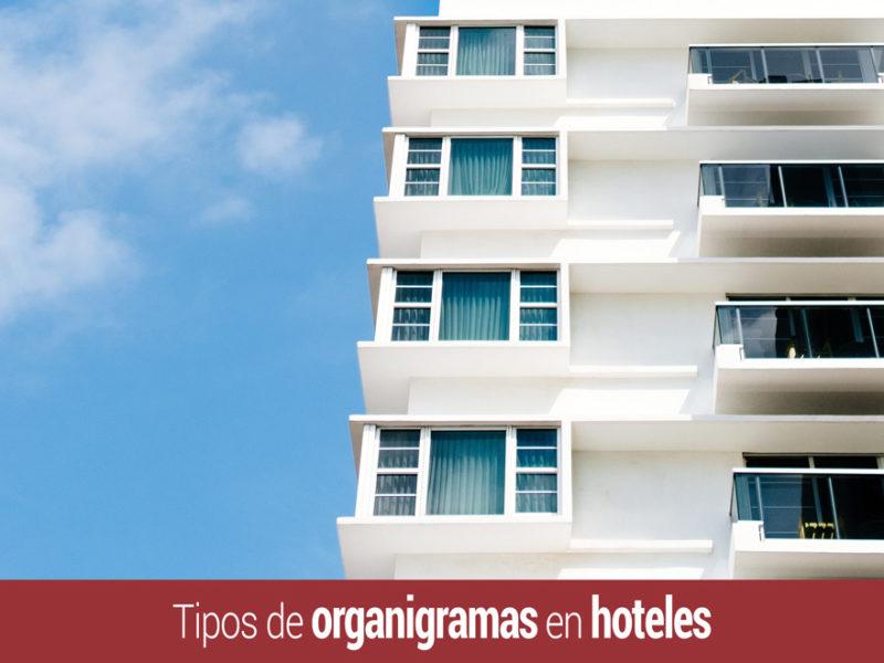 tipos-organigramas-hoteles-800x600 Tipos de organigramas en hoteles