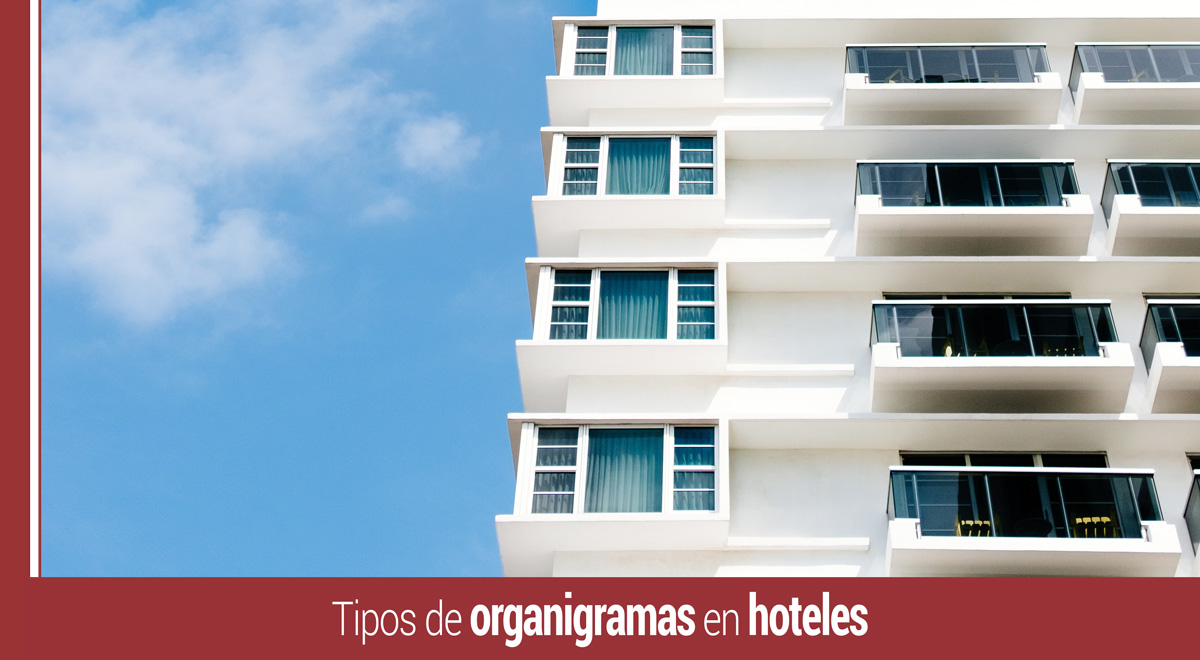tipos-organigramas-hoteles Tipos de organigramas en hoteles