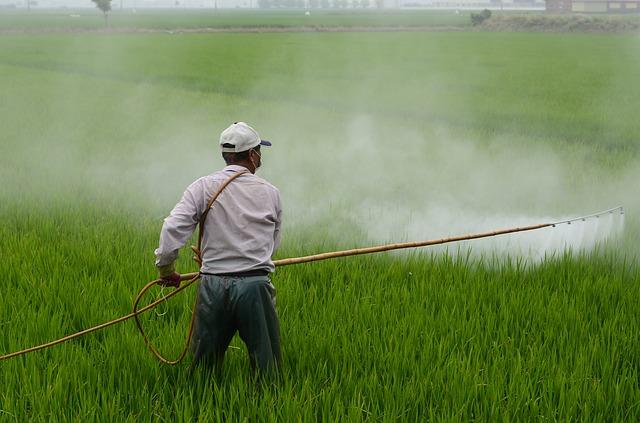 herbicide-587589_640 Prevención de riesgos laborales en el sector agrario