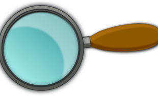 magnifying-glass-48956_1280-310x189 Inicio