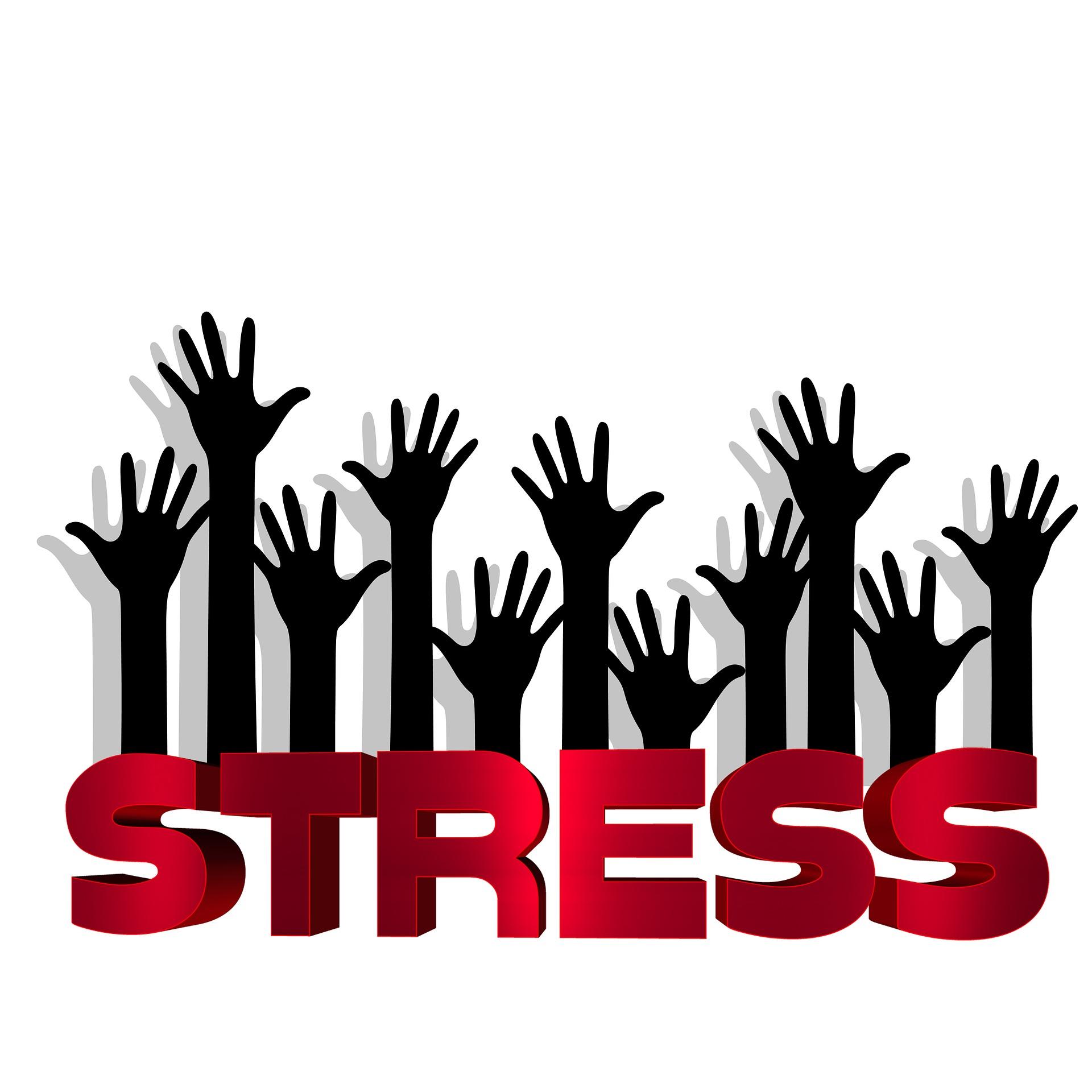 estres-colesterol La relación entre el estrés y el colesterol