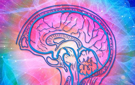 inteligencia-emocional-prl-473x300 Inicio