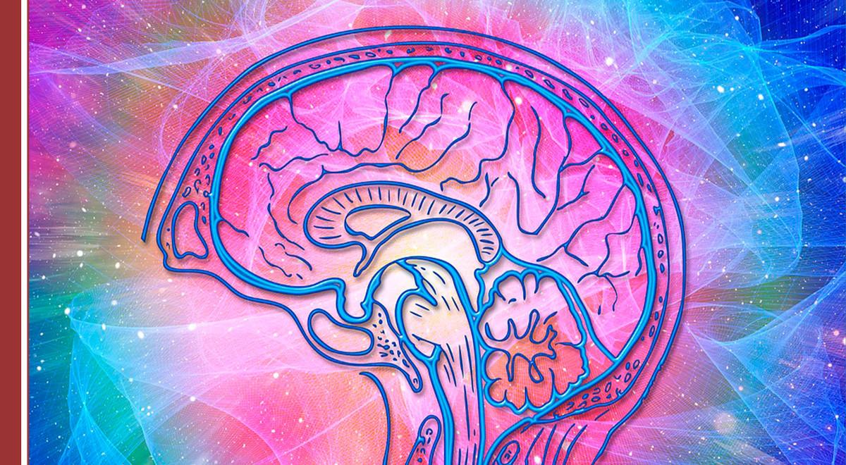 inteligencia-emocional-prl La inteligencia emocional consagrada a la prevención de riesgos laborales