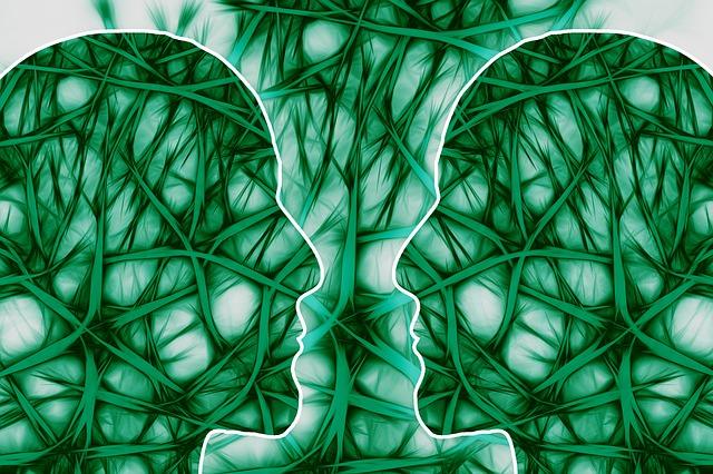 neural-pathways-221719_640 Inteligencia Emocional