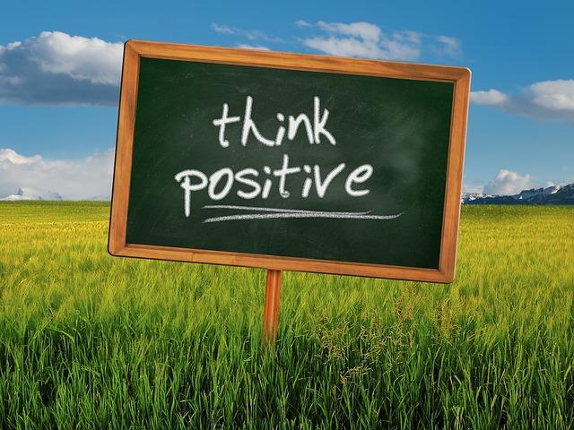 field-328962_640 El positivismo como cualificación profesional