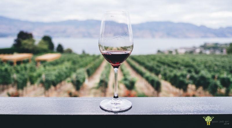 webs-sobre-vinos Las 10 webs sobre vinos más importantes del mundo