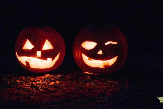Disfruta de un halloween terrorífico
